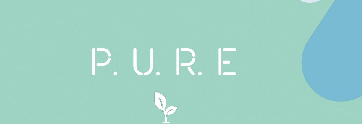 Londa Professional Care Уход за волосами P.U.R.E