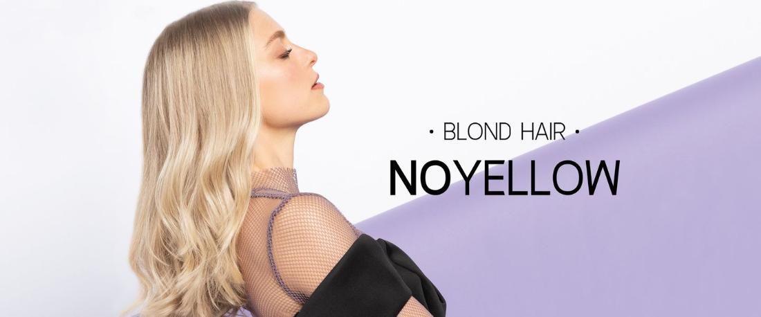 Selective Professional Blonde Hair   NOYELLOW